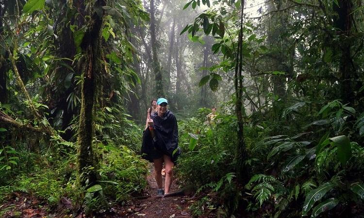 A tréfás kedvű Costa Rica-i klíma
