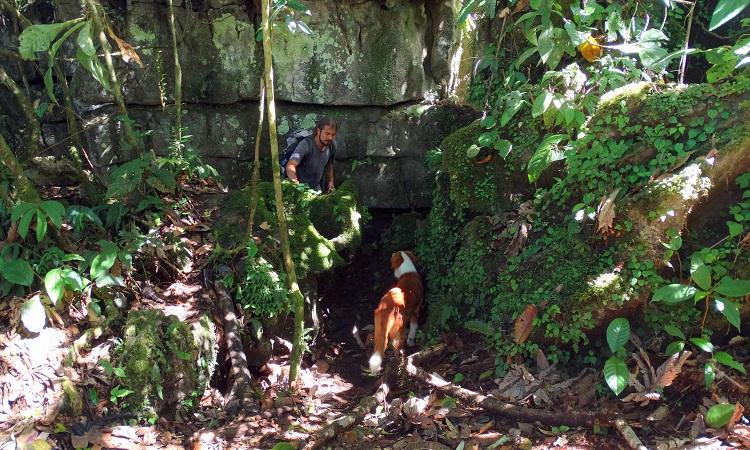 Chiguaza labirintusa és a Jumandi Park