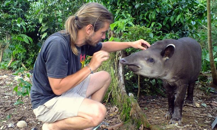 Amazónia legnagyobb hala és egy tapír