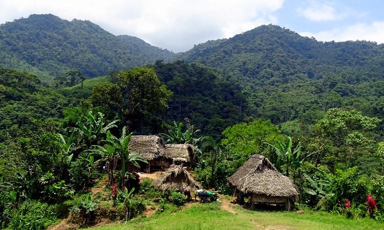 A panamai hegyvidék nagyon kellemes hely